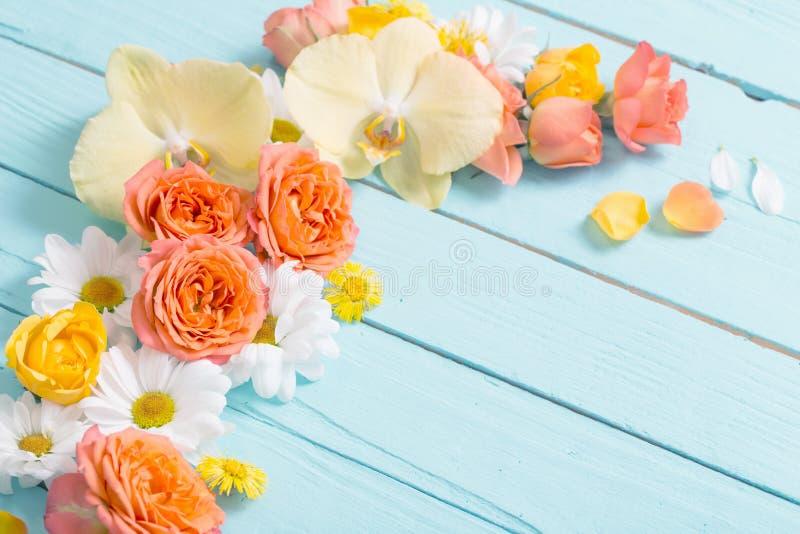 Fleurs sur fond de bois peint en bleu images stock