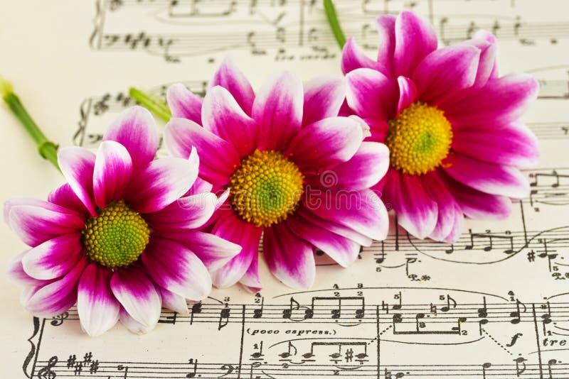 Fleurs sur la musique de feuille photo stock