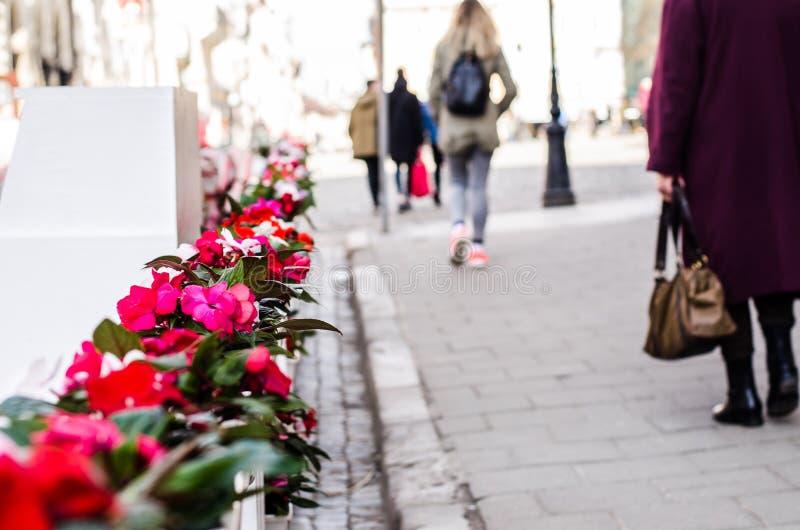 Fleurs sur la rue au centre de la ville image stock