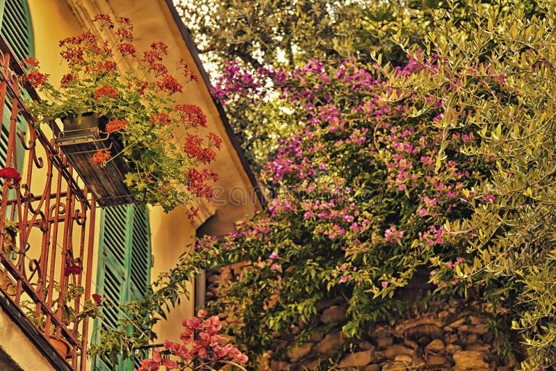Fleurs sur le balcon italien photographie stock libre de droits