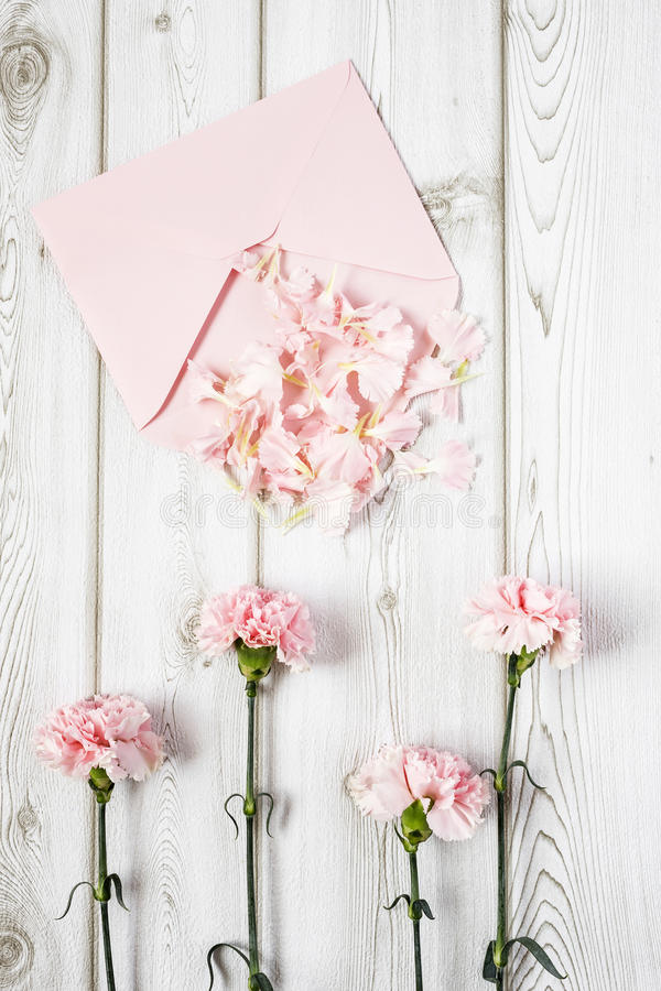 Fleurs sur le fond blanc Configuration plate, vue supérieure photos stock