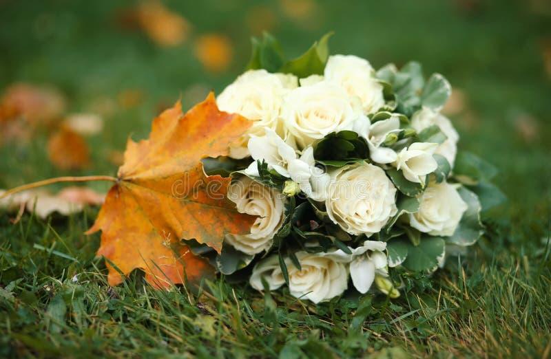 Fleurs sur le lac photographie stock libre de droits