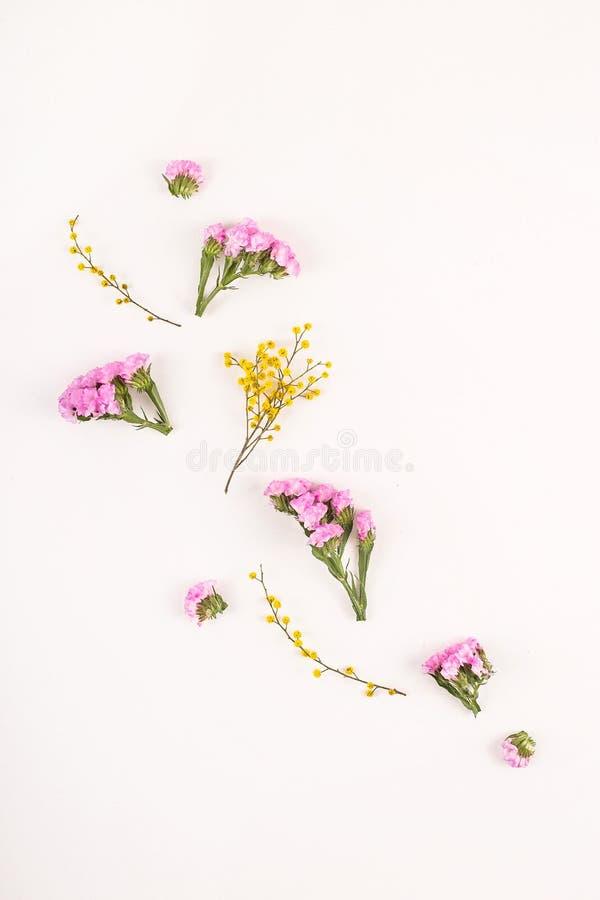 Fleurs sur un fond blanc - bonjour ressort et bonjour été photographie stock libre de droits