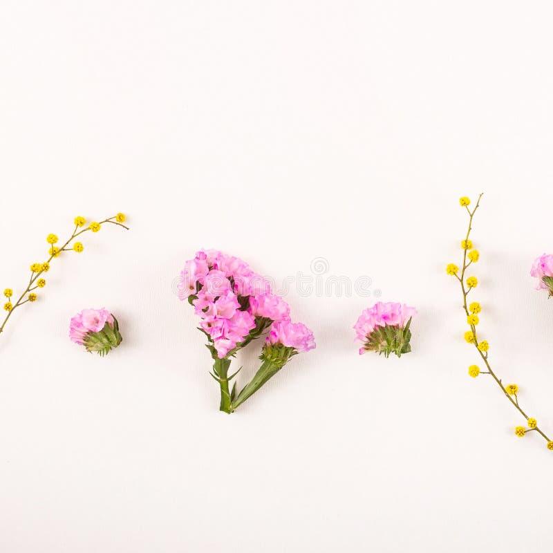 Fleurs sur un fond blanc - bonjour ressort et bonjour été photos libres de droits