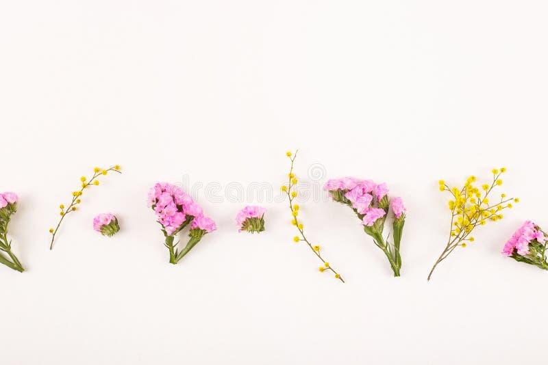 Fleurs sur un fond blanc - bonjour ressort et bonjour été photo stock