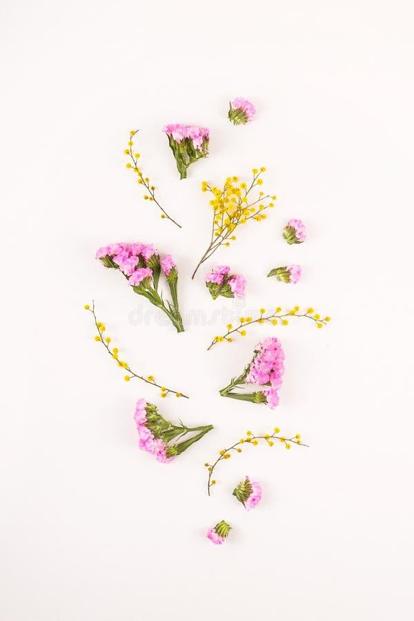 Fleurs sur un fond blanc - bonjour ressort et bonjour été photo libre de droits