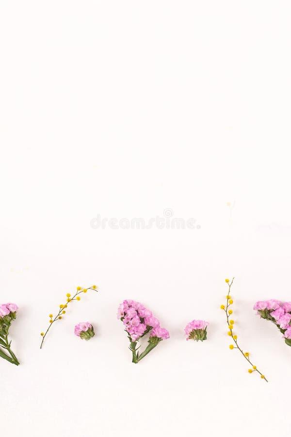 Fleurs sur un fond blanc - bonjour ressort et bonjour été image stock