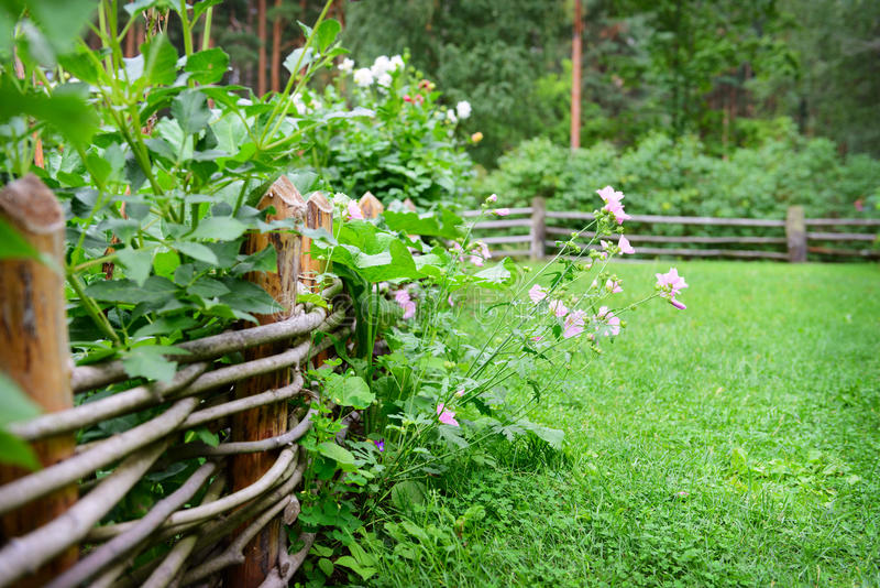 Fleurs sur une barrière en été photographie stock libre de droits