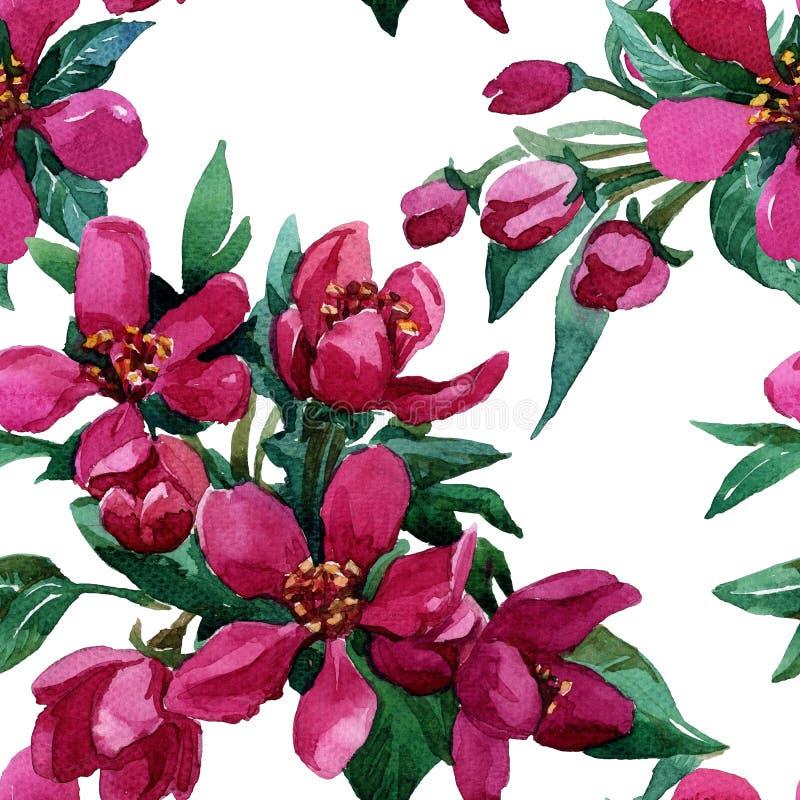 Fleurs sur une branche se développante au printemps photographie stock