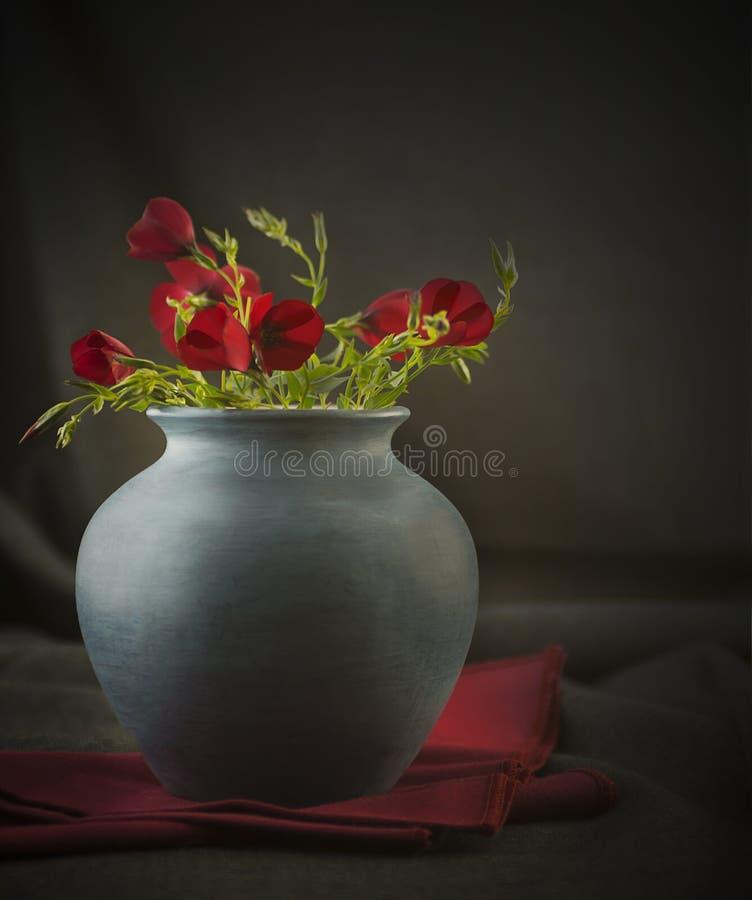 Fleurs toujours sauvages de photographie de la vie dans un vase bleu photos stock