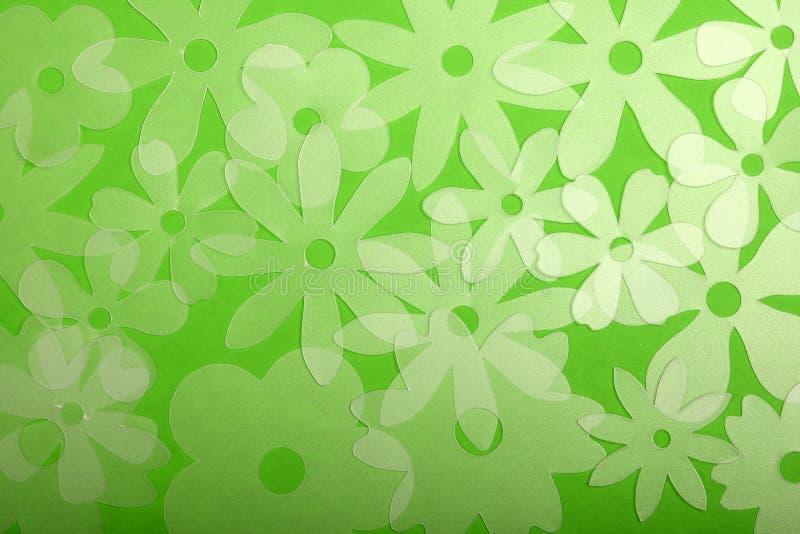 Fleurs translucides sur le vert photos libres de droits