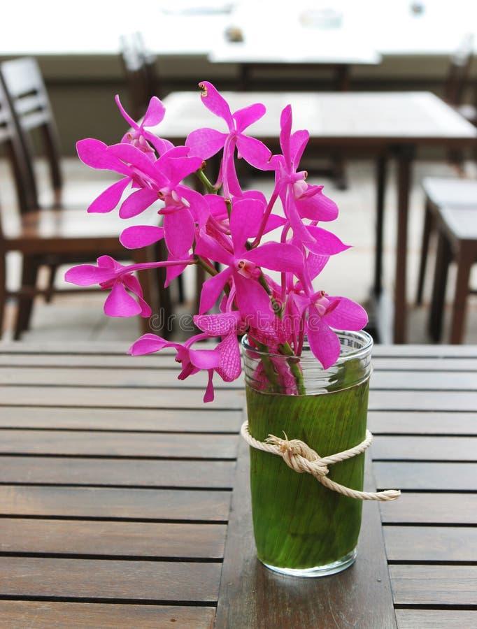 Fleurs tropicales. photos libres de droits