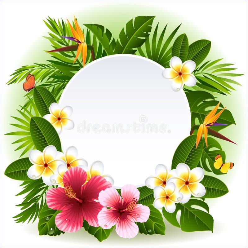 Fleurs tropicales illustration libre de droits