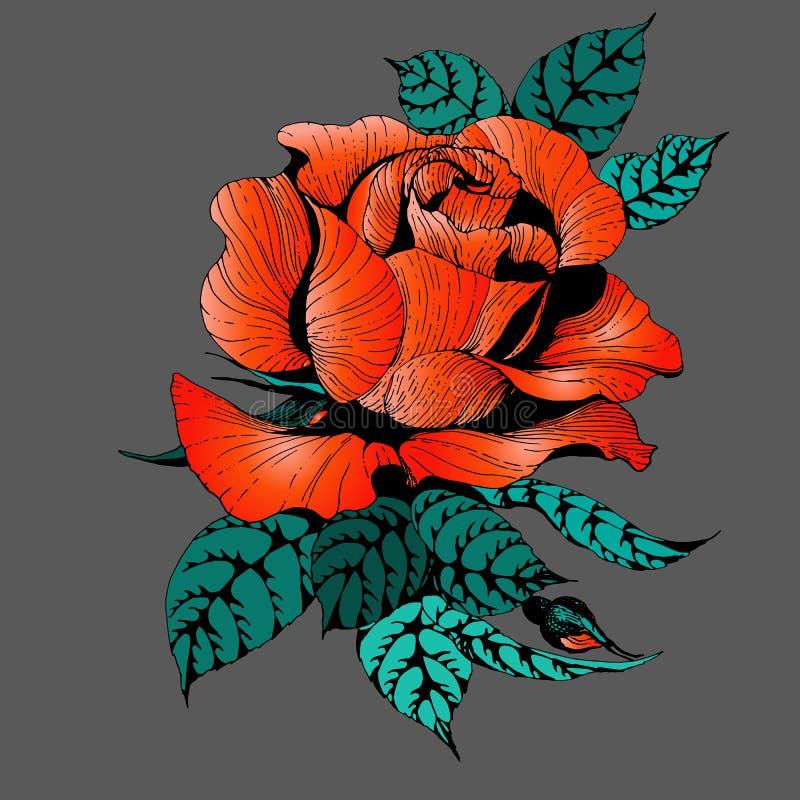 Fleurs Vecteur Une branche des roses avec des feuilles, des fleurs et des bourgeons Collage des fleurs et des feuilles illustration libre de droits