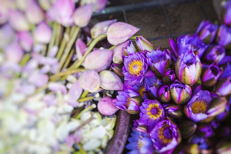 Fleurs vendues pour être employé comme offres devant le temple de la relique de dent à Kandy Sri Lanka Foyer de Slective photographie stock libre de droits