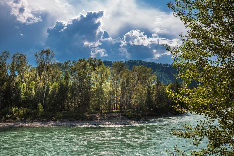 fleuve 2006 auguste de katun d'altai Paysage de rivière de l'Altai photographie stock libre de droits