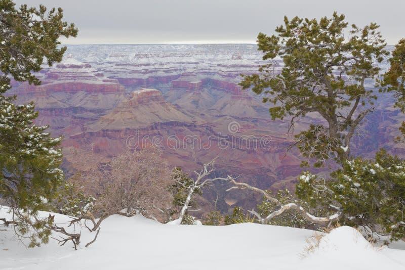 Fleuve Colorado En gorge grande photographie stock