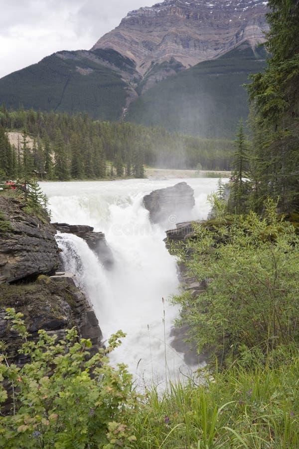 Fleuve d'Athabasca se renversant au-dessus des automnes d'athabasca photo stock