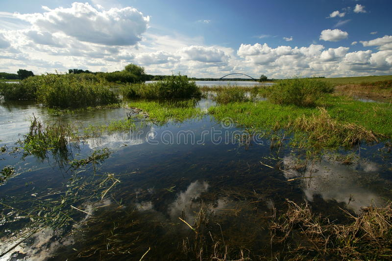 Fleuve d'Elbe photos stock