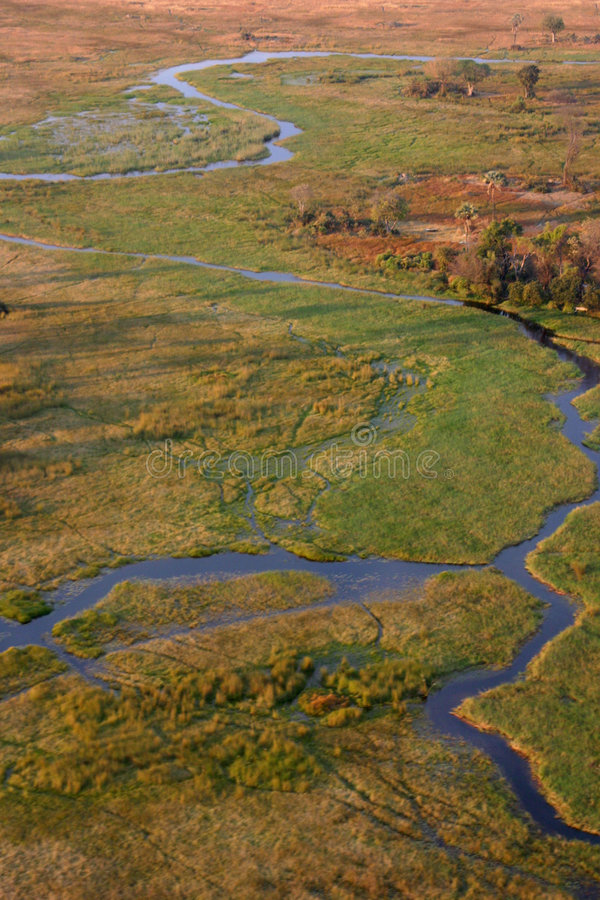 fleuve d'okavango de delta petit photo stock