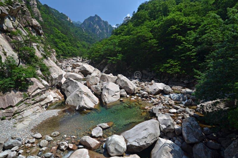 Fleuve de forêt dans Seoraksan, Corée photographie stock libre de droits