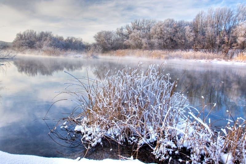 Fleuve de forêt de l'hiver photos libres de droits