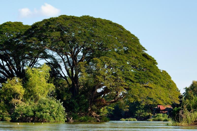 Fleuve de Mekong photos libres de droits