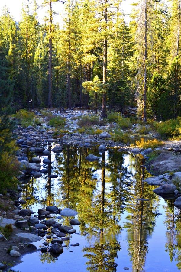 Download Fleuve de montagne image stock. Image du outdoors, extérieur - 45355655