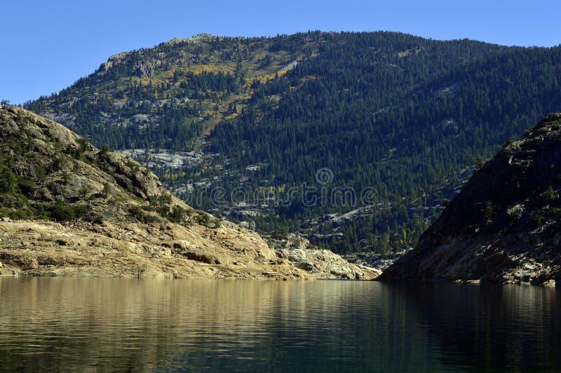 Download Fleuve de montagne image stock. Image du flore, lumineux - 45355757