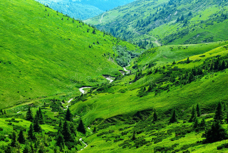 Fleuve de montagne parmi les côtes vertes image stock