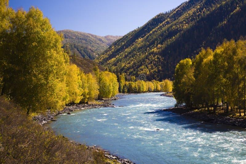 Download Fleuve de montagnes image stock. Image du beau, bleu, automne - 8669615