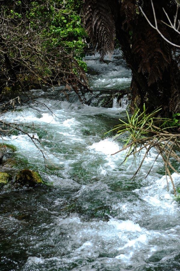 Fleuve de Tarawera image libre de droits