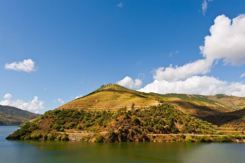 Fleuve Douro photographie stock libre de droits
