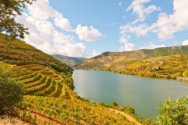 Fleuve Douro images stock