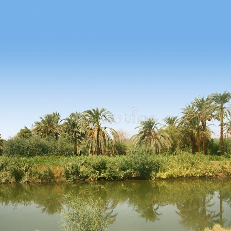 Fleuve le Nil en Egypte image libre de droits