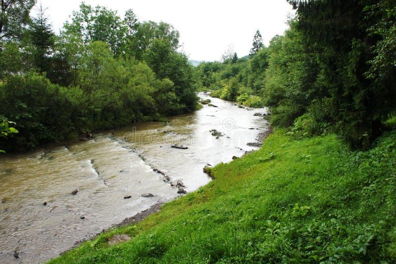 Fleuve modifié image d'écoulement d'eau crique carpathiens l'ukraine photos libres de droits