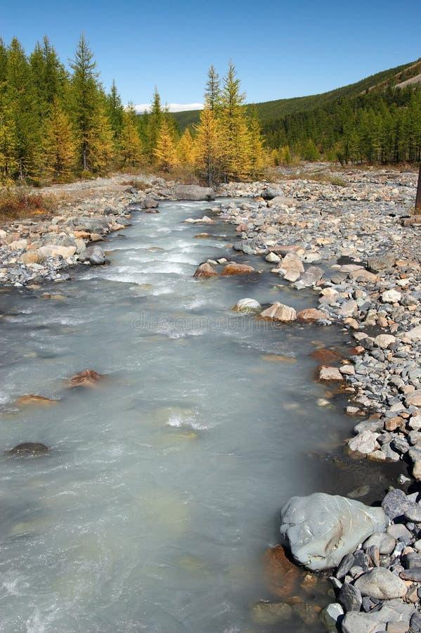 Fleuve, montagnes et bois. images libres de droits
