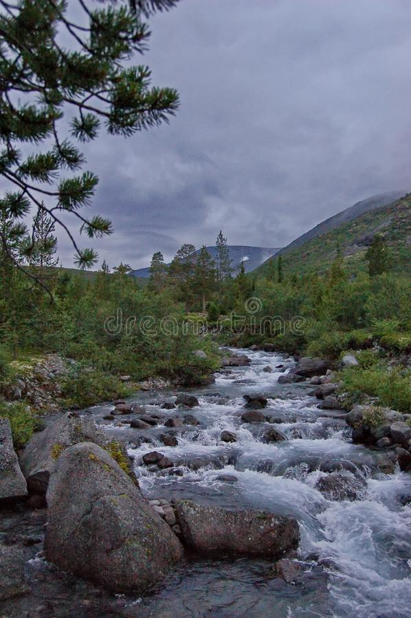 Fleuve rapide de montagne Cascade Rivière de montagne d'eaux de plus près de la source images libres de droits