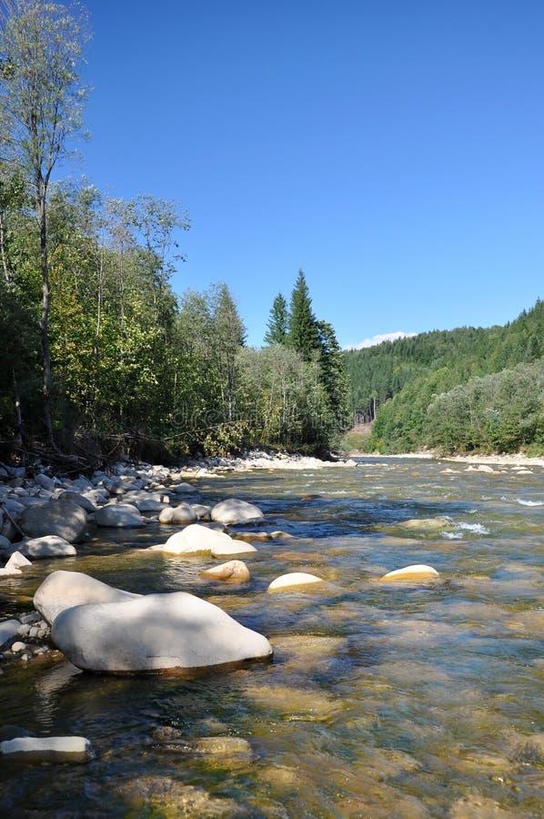 Fleuve sauvage de montagne photo libre de droits