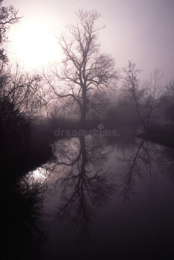 fleuve Surrey de taupe image libre de droits