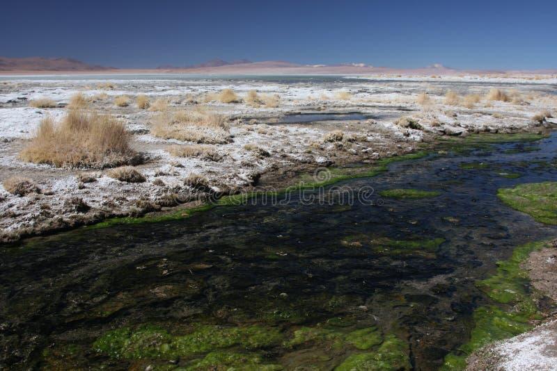 Fleuve vers Laguna Salada photographie stock