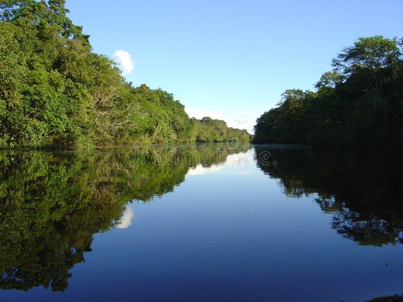 Fleuves et jungles au Pérou image libre de droits