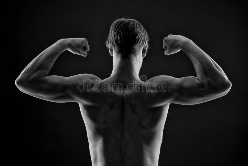 Flex het wapenspieren van de mensenbodybuilder Atleet met geschikt torso, achtermening De sportman toont bicepsen en triceps Trai stock foto's