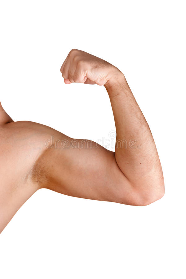 Download Flexing Biceps Isolated On White Stock Image - Image: 17122521