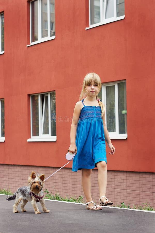 Flicka 6 år gammalt gå med en Yorkshire terrier nära höghus arkivfoto
