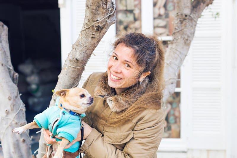 Flicka eller kvinna som utomhus rymmer den gulliga chihuahuahunden - folket daltar begrepp royaltyfri fotografi