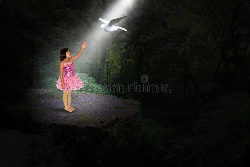 Flicka fred, hopp, förälskelse, natur, duva, trän royaltyfria bilder