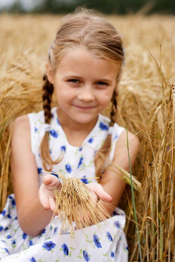 Flicka i cornfield royaltyfria bilder