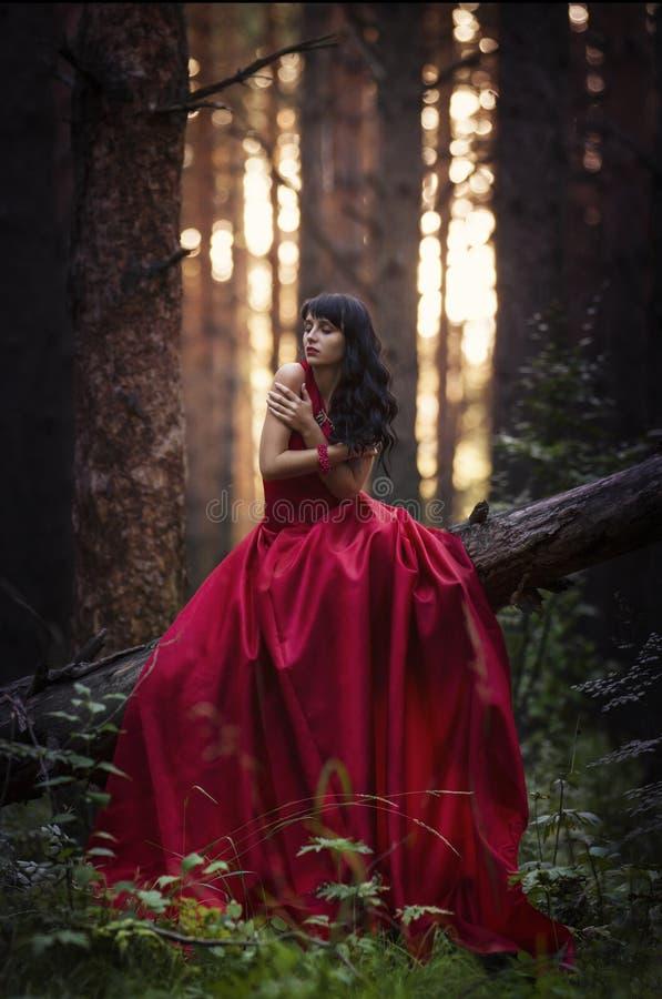 Flicka i den röda klänningen i skogen arkivbild