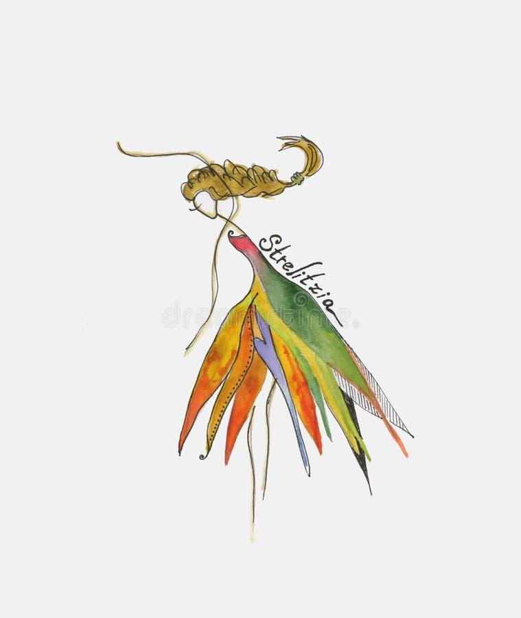 Flicka i en blommastreliciadräkt royaltyfri fotografi